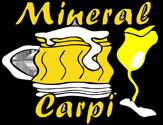 Mineral Carpi